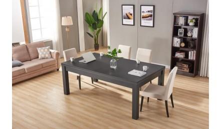 会议桌饭桌台球桌一体黑色款