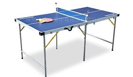 儿童乒乓球台