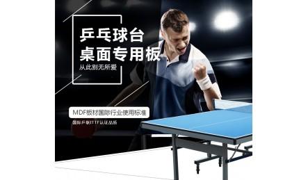 ITTF认证双子星体育乒乓球台面板