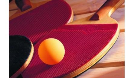 质量好的乒乓球台推荐_智能型乒乓球台充斥整个销售市场
